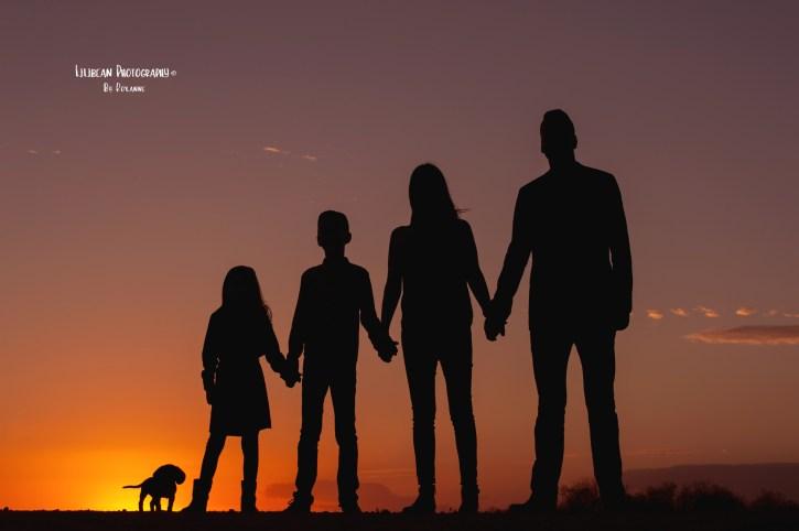 14-miami-broward-family-photographer-everglades-sunset-parkland-florida-national-park-lilibean-photography-lion-king-simba-silhouette