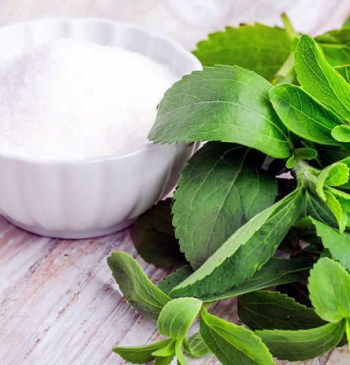 stevia sweet sugar option