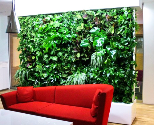 interior design creative logo green living wall project ogrod wertykalny pl