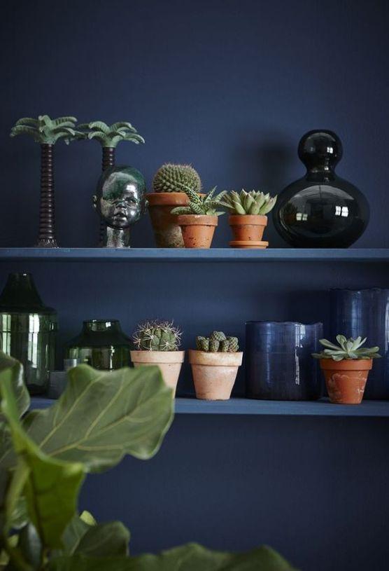 mur bleu marine plante cactus etagere deco lilideambule