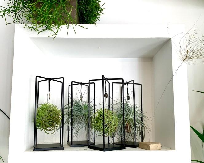 Création Kokenendo plantes stabilisées suspendues