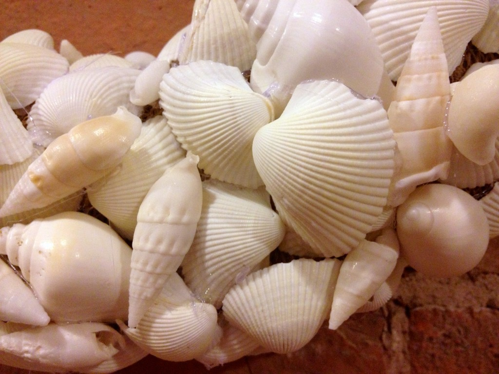 diy sea shell wreath