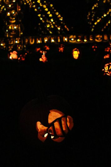 Great Jack O'Lantern Blaze