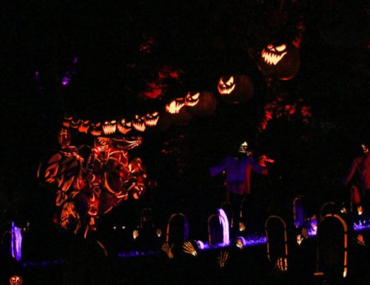 Apple Cider Donuts and Great Jack O'Lantern Blaze