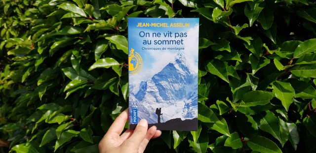 On ne vit pas au sommet de Jean-Michel Asselin