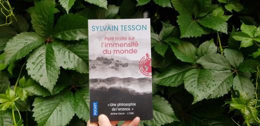 Petit traité à l'immensité du monde de Sylvain Tesson