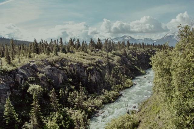 Into the wild - Alaska