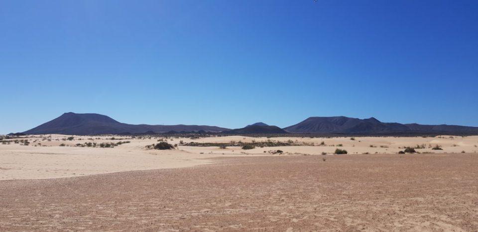 dunes de collajero - fuerteventura