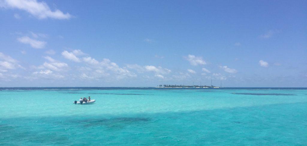 Saint-Vincent-et-les-Grenadines - Charrue