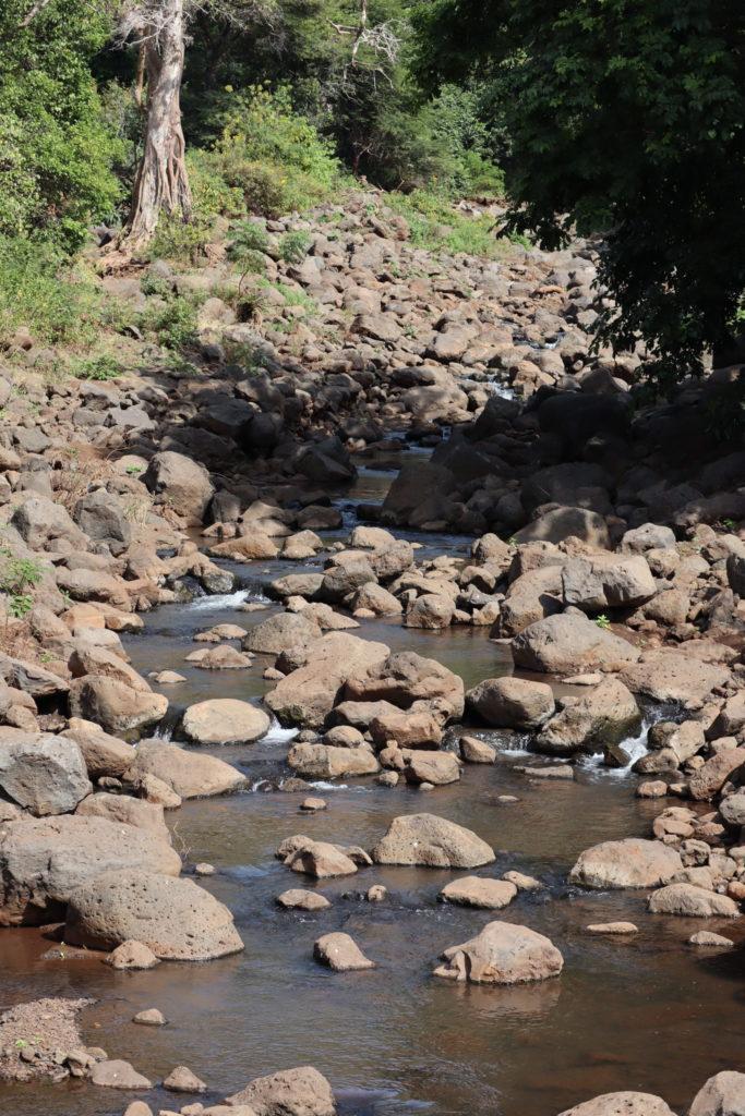 cour d'eau lac manyara tanzanie safari