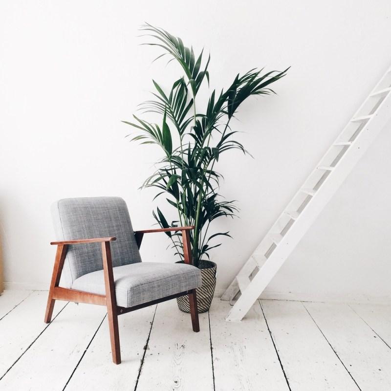 bureau mezzanine plantes green deco