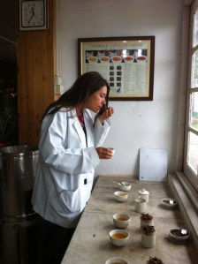 Cha Tea Atelier Gabriella