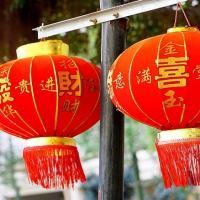 AperiPorco, sfilata, ravioli e maiali volanti: è il Capodanno Cinese a Milano, bellezza!