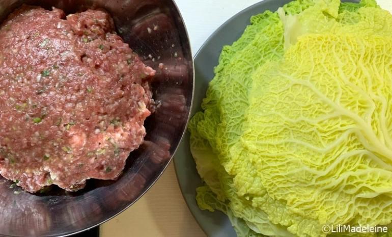 involtini di verza giapponesi ricetta