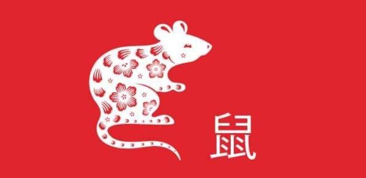 Capodanno Cinese 2020 Milano via sarpi