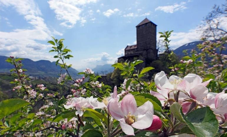 Strade del Vino Trentino Castel Tirolo