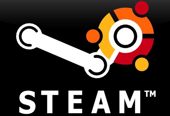 Steam + Ubuntu