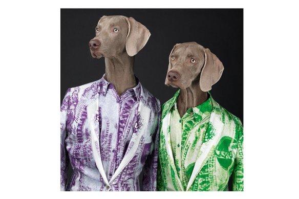 william-wegman-acne-studios-dog-campaign-3 (1)