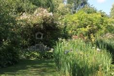 Le jardin des lianes - banc des amoureux