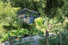 Le jardin des lianes - chalet bleu