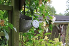 Le jardin de la goutte d'eau - petit arrosoir