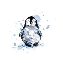 illustration-aquarelle-pingouin