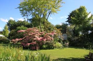 Cherienne - le jardin des lianes
