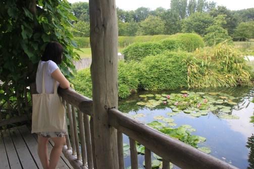 jardin mosaïc - jardin du dragon