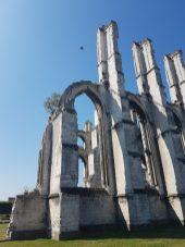 ruines abbaye saint bertin 1