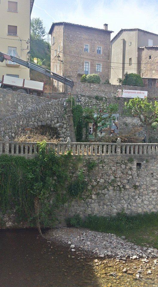 Talada Avet Pont Vell 004