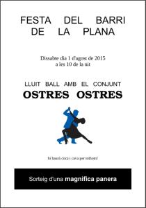 20150801 Festa del Barri de la Plana
