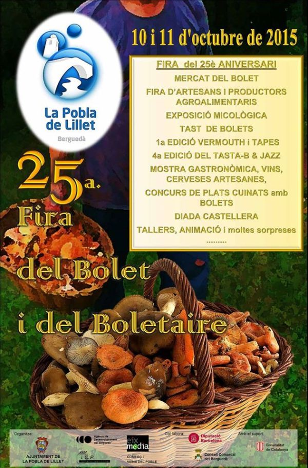 20151010_25a Fira del Bolet i del Boletaire 2