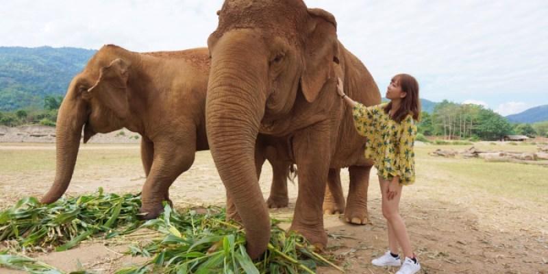 【清邁】大象自然公園Elephant Nature Park:再次回到這充滿微笑的自由樂園