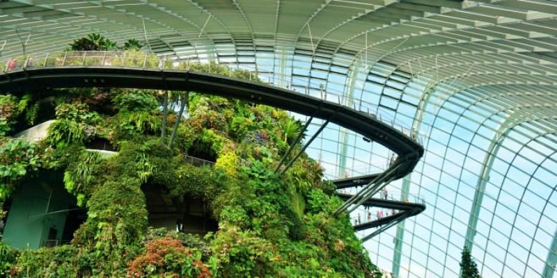 新加坡景點 濱海灣花園門票交通、花穹霧林冷室、燈光秀時間,懶人攻略