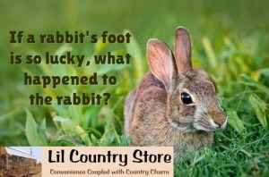 rabbits-foot