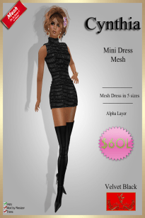 [60] Cynthia - Mesh Dress - Velvet BlackPIC