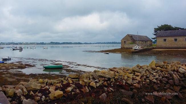 Île de Berder bretagna le maree