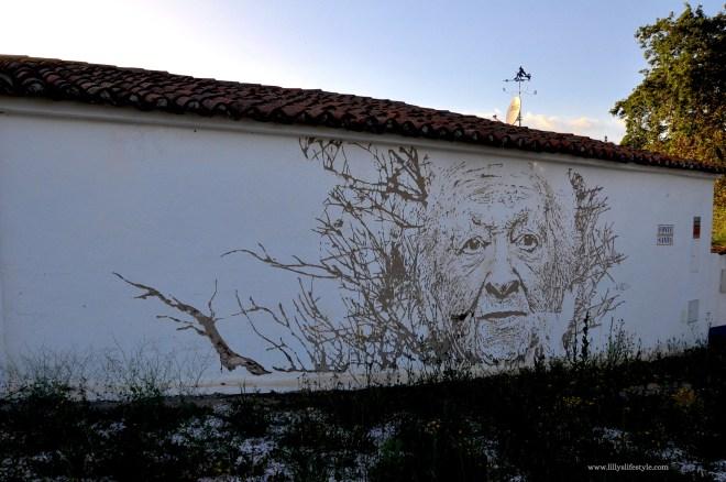 portogallo opere street art