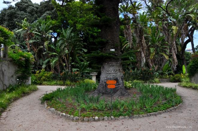 giardini lisbona
