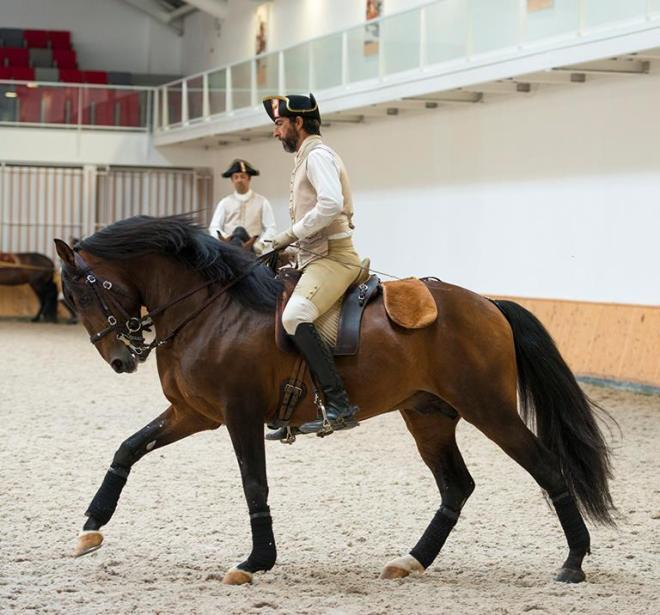equitazione lisbona