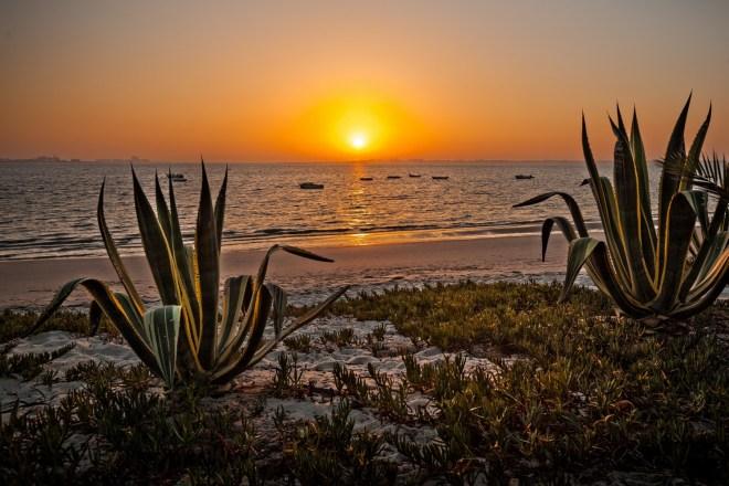 spiaggia fluviale gaio-rosario portogallo