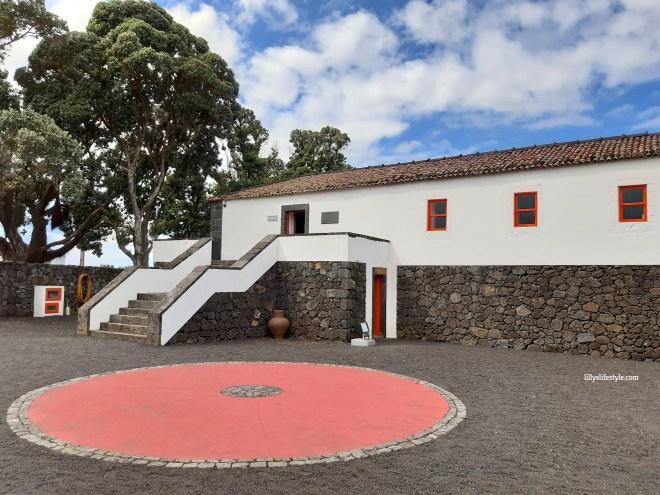 museo del vino pico azzorre