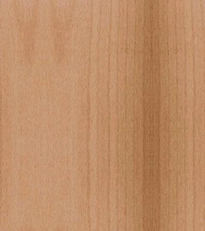 essence de bois hêtre