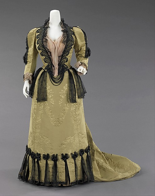 Worth 1893 Day Reception Afternoon Dress