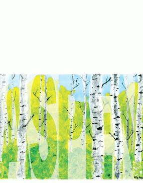 Spring-Aspen-Overlay-Bold