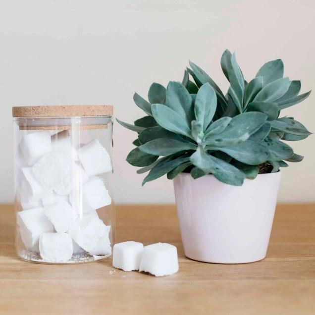 Tablettes lave-vaiselle fait maison (1)