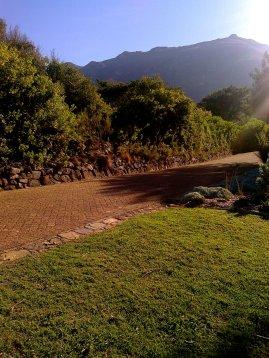 Kirstenbosch :)