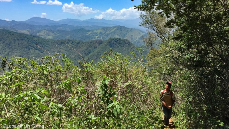 Guide David of Jarabacoa hiking up and view of mountains behind him.