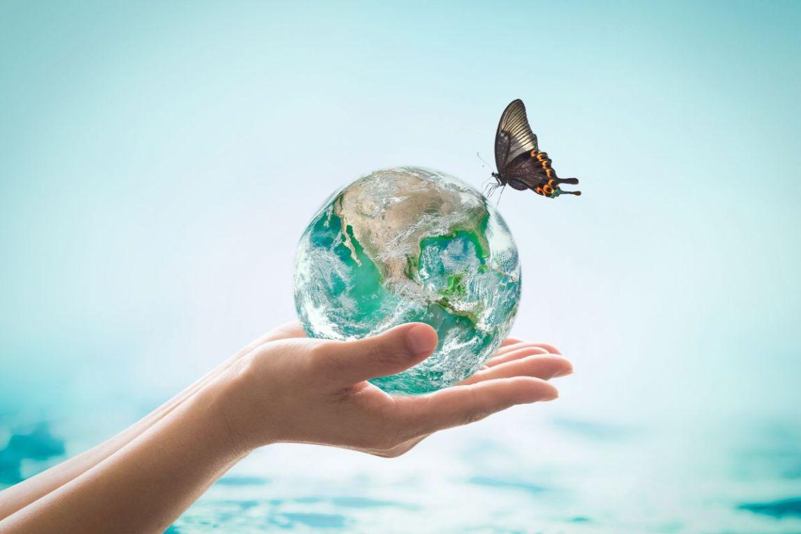 consigli essere piu ecologici