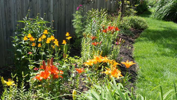 about-garden_02